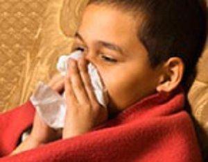 flu foto
